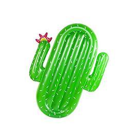 Fairysu Inflatable Cactus Pool Float Raft, Large Outdoor Swi