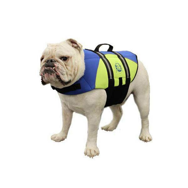 Blue/Yellow Neoprene Doggy Jacket