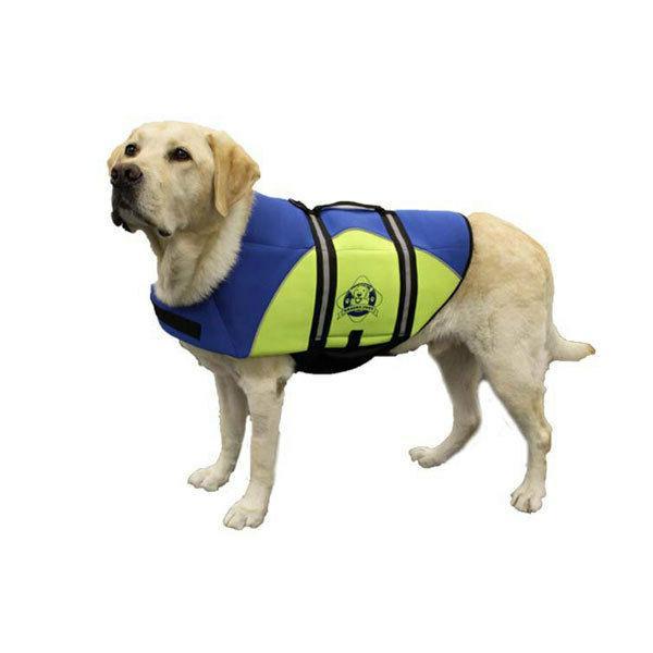 Blue/Yellow Doggy Jacket