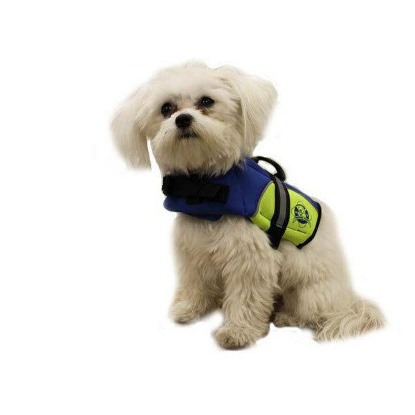 blue yellow neoprene doggy life jacket